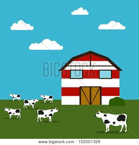 Farmhouse Vector illustration Red-white barn in a field and grazing cows