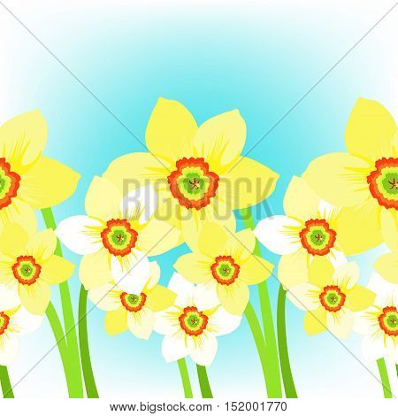 Daffodils Flower Meadow On Background Sky. Vector Illustration