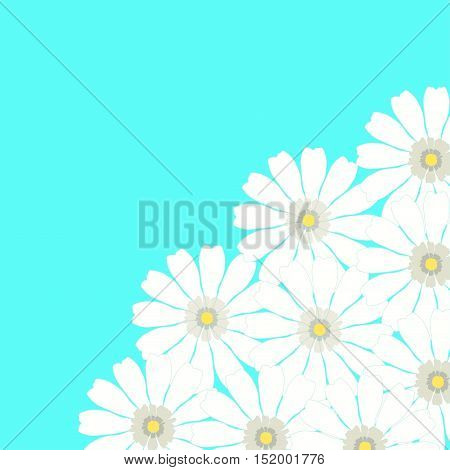 Greeting Card With Camomile On A Blue Background. Vector Illustration