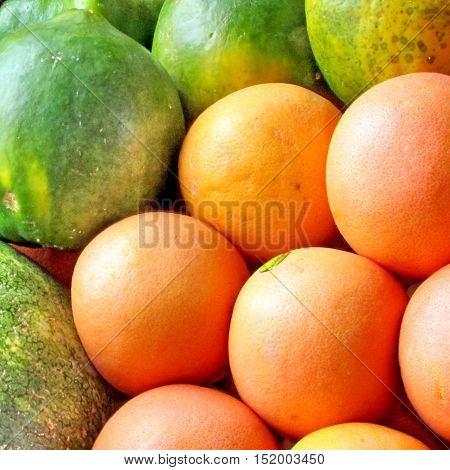Grapefruit and papaya on bazaar in Tel Aviv Israel June 27 2012