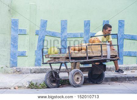 HAVANA CUBA - JULY 18 : A Cuban fruits seller in old Havana street on July 18 2016. The historic center of Havana is UNESCO World Heritage Site since 1982.