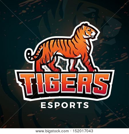 Tiger sport logo vector. Mascot design template. Football or baseball illustration. College league insignia, High School team logotype on dark background