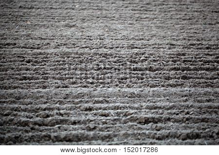 Fresh plowed soil on a field as background.