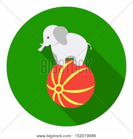 Circus elephant icon in flat style isolated on white background. Circus symbol vector illustration.