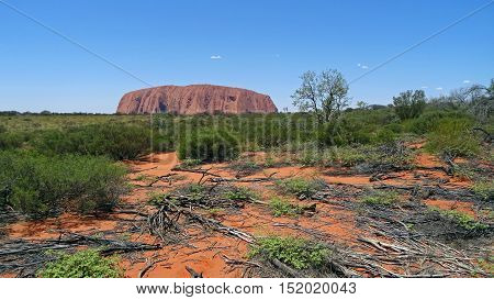 In the background, Ayers Rock, also known as Uluru, is a huge rock sandstone located in the Northern Territory, Australia. It is a sacred place for the indigenous peoples. It is ranked on the list of UNESCO World Heritage. In the foreground, dead branches