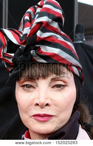 LOS ANGELES - OCT 16:  Toni Basil at the ALS Association Golden West Chapter Los Angeles County Walk To Defeat ALS at the Exposition Park on October 16, 2016 in Los Angeles, CA