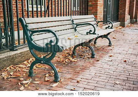 wooden bench on the street in autumn. autumnal city bench at Harvard University