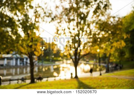 blurred background in Boston common park. blurred the Boston Common Frog Pond and trees