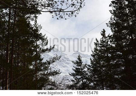 Beautiful winter landscape with mountains and silhouettes of the trees. Snowy mountains with forest, firs, trees.