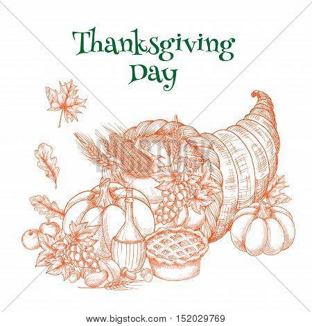 Thanksgiving harvest cornucopia sketch for greeting card. Traditional autumn celebration element of food plenty horn with thanksgiving pie, pumpkin, apple and autumn leaves of maple and oak. Design for thanksgiving banner, poster on white background
