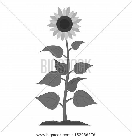Sunflower icon monochrome. Single plant icon from the big farm, garden, agriculture monochrome.