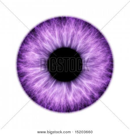 purple iris texture