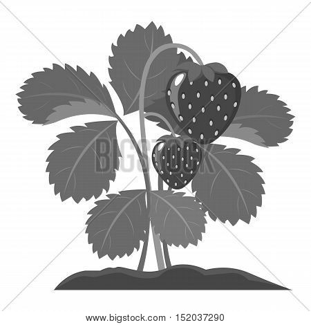 Strawberry icon monochrome. Single plant icon from the big farm, garden, agriculture monochrome.