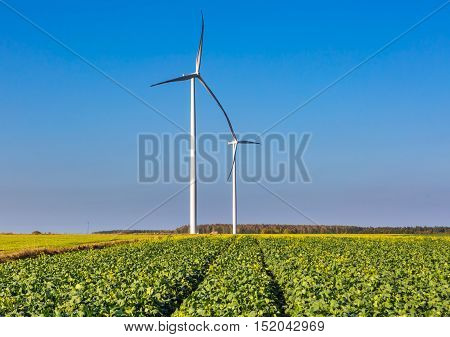 Spring Or Autumnal Landscape With Windmills On Fields