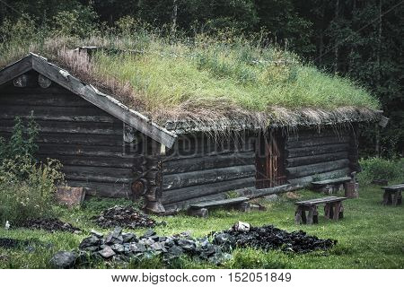 Old timber lodge with grass roof. Grass and bushes growing on top of the roof.