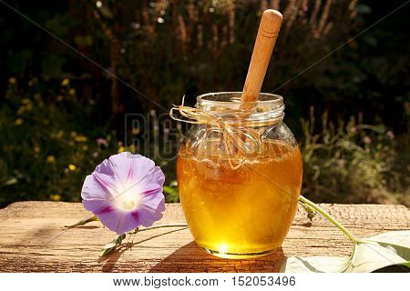 Delicious Sweet Honey In Glass Jar.