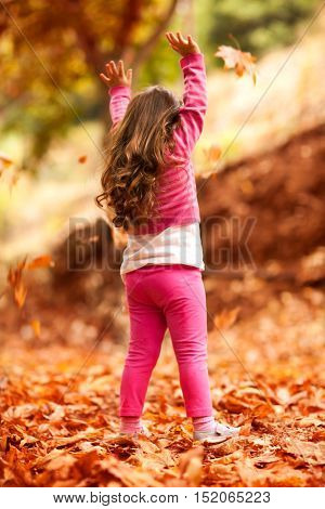 Happy little girl in autumn park, rear view of a nice child throwing up dry tree leaves, playing outdoors in a warm fall day, happy carefree childhood
