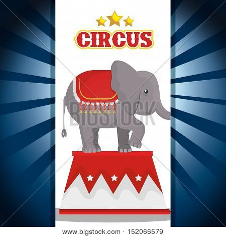 circus elephant festival show over blue and white background. vector illustration