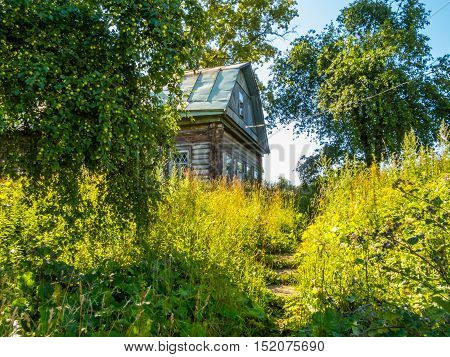 The old wooden rural house in Russia