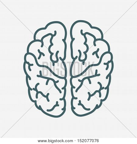 brain vector icon isolated on white background