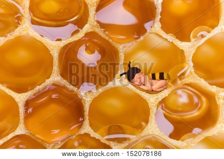 Newborn baby in bee outfit sleeping in a real honeycomb
