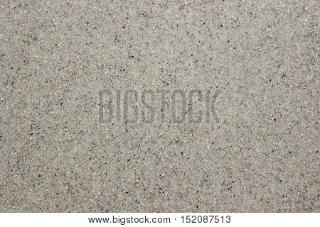 Background of wet gray sand of the sea. Close-up