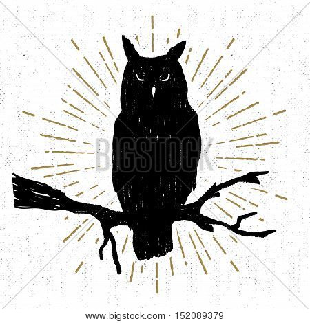 Hand drawn Halloween icon with a textured owl vector illustration.