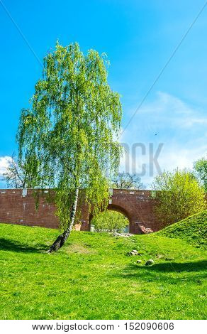 The Greenhouse Bridge over the ravine with the scenic birch tree on the foreground Tsaritsyno Moscow Russia.