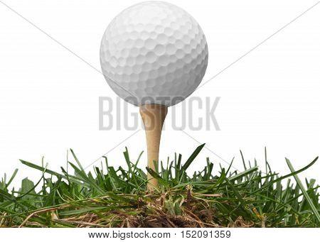golf ball with a golf tee on a grass