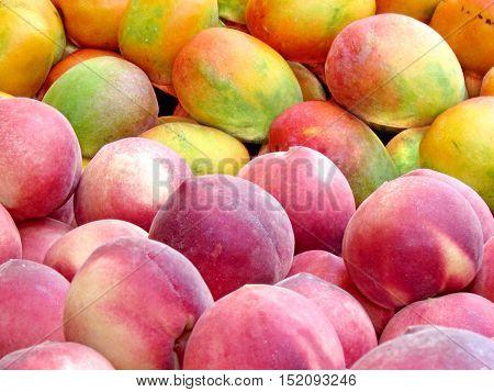 Hybrid of peach and mango on bazaar in Tel Aviv Israel July 12 2012