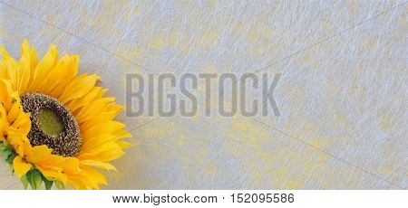 Sunflower, grey fiber fabric and yellow glitter film, background