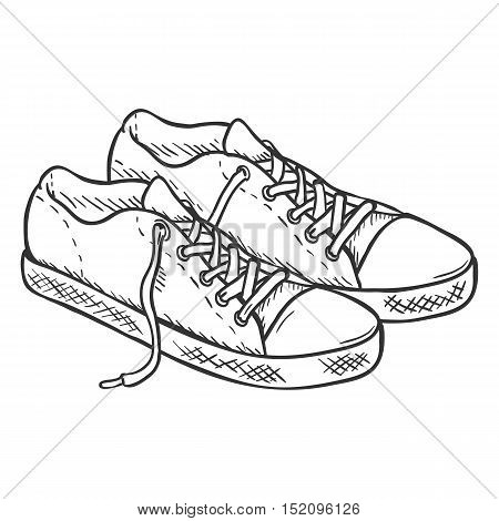 Vector Sketch Illustration - Pair Of Casual Gumshoes