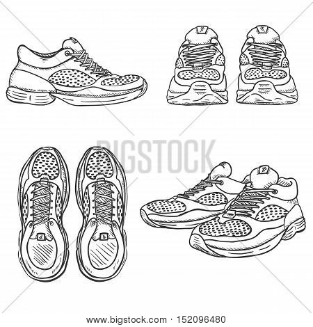 Vector Set Of Sketch Running Shoes. Top, Side And Front Views
