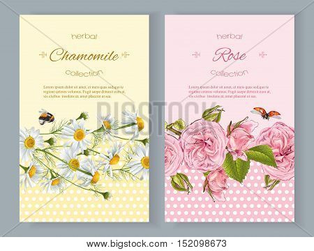 Vector natural cosmetics vertical banners with flowers. Design for cosmetics store beauty salon natural and organic products health care products aromatherapy. With place for text