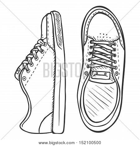 Vector Sketch Illustration - Pair Of Skaters Shoes. Front And Top View