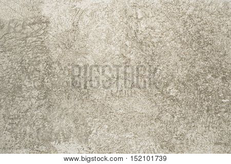Decorative wall textured background cement and sand