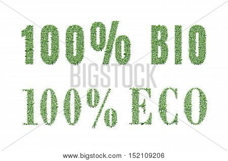 Ecology design. The word 100 eco bio is made of grass. Environmental concept for advertisement healthy food, ecological products, lifestyle, etc. Vector illustration. Vertical location.