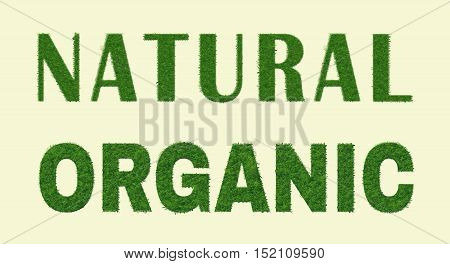 Ecology nature design. The words Natural, Organic is made of grass.Environmental concept for advertisement healthy food, ecological products, lifestyle, etc. Vector illustration. Horizontal.