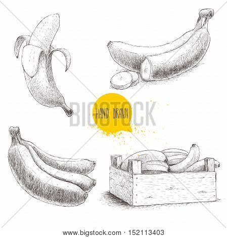 Hand drawn set of fresh ripe bananas.Wooden crate with bananas on a white background. Sketch style illustration.