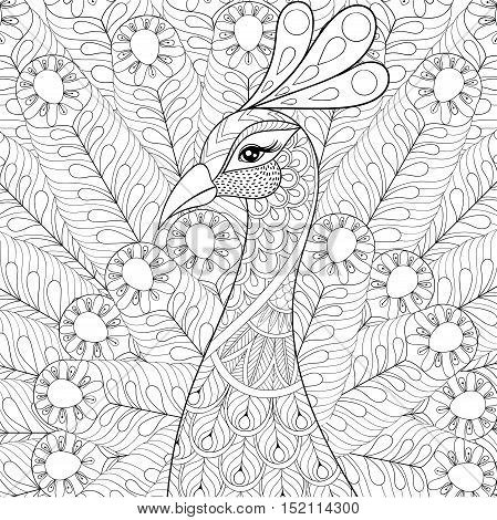 Peacock with feathers in zentangle style. Freehand sketch for adult antistress coloring page with doodle elements. Ornamental artistic vector illustration for tattoo, t-shirt print. Bird collection.