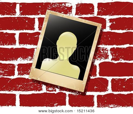 vector photo card with user icon on red wall