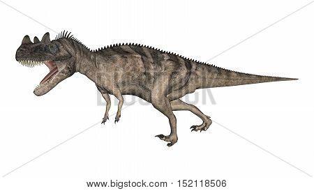 3D Rendering Dinosaur Ceratosaurus On White