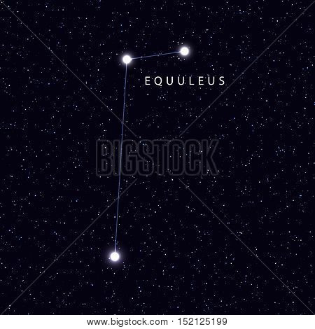 Sky Map with the name of the stars and constellations. Astronomical symbol constellation Equuleus