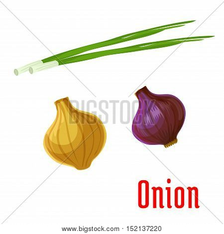 Fresh onion vegetable cartoon icon of yellow and red onion bulbs with green sprouted leaves. Healthy spices and condiments, salad recipe design