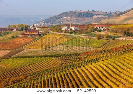 Rows of vineyards on hills of Piedmont, Italy in autumn.