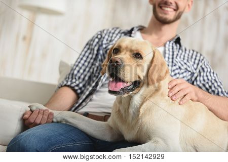 close up of a dog lying on the happy man
