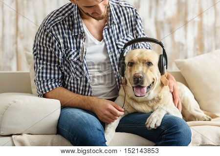 happy labrador puppy listen to music in headphones while lying on a couch