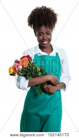 Laughing african american female florist with curly hair and green apron on an isolated white background for cut out