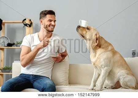 pet holding cup with its nose while happy man drinking on couch
