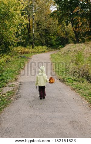 Little girl in the autumn park. pathway
